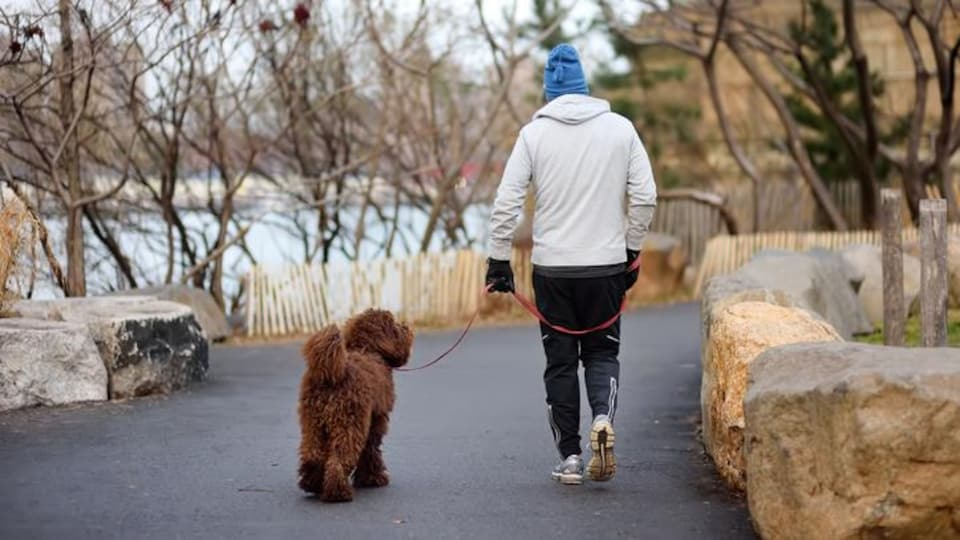 Un homme promène son chien.