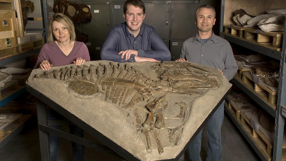 Darla Zelenitsky, Eamon Drysdale, François Therrien devant un fossile du dinosaure.