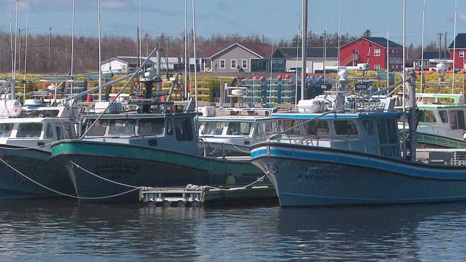 Les bateaux de pêche au homard à quai, devant des paniers de homards.