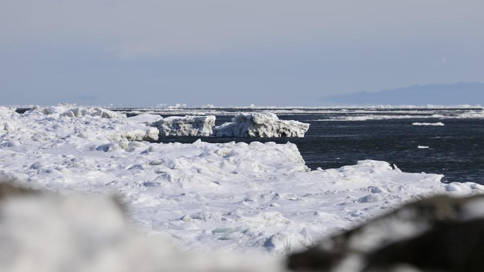 On pouvait constater une faible épaisseur de glace dans le fleuve Saint-Laurent cet hiver à Québec.