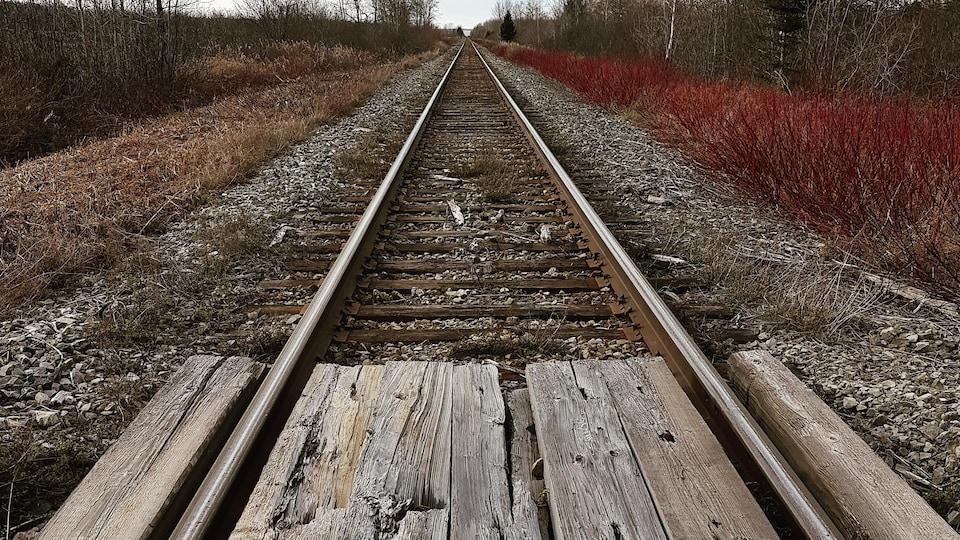 La voie ferrée en Gaspésie.