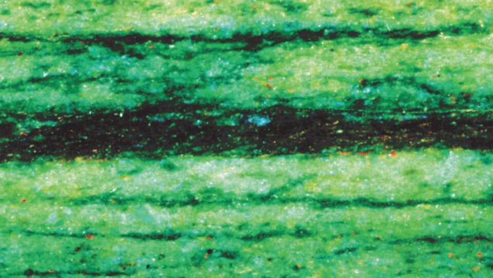 De fines couches noires dans une roche verte.