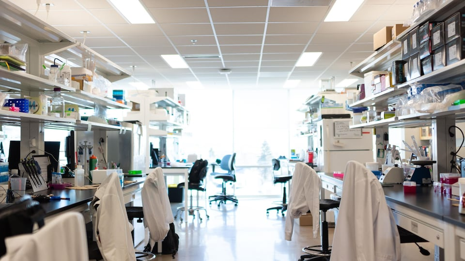 Des sarraus blancs sur des chaises dans un laboratoire de médecine.
