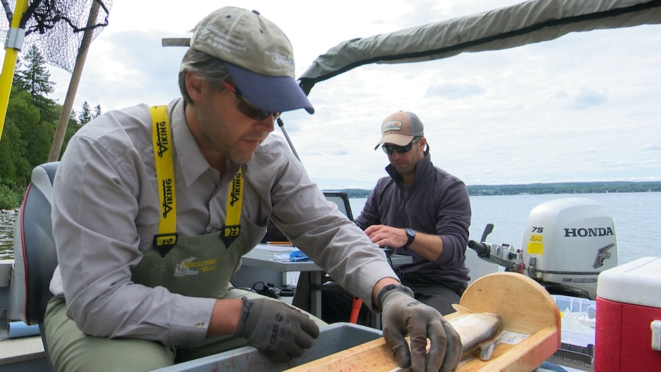 Des chercheurs sur un bateau
