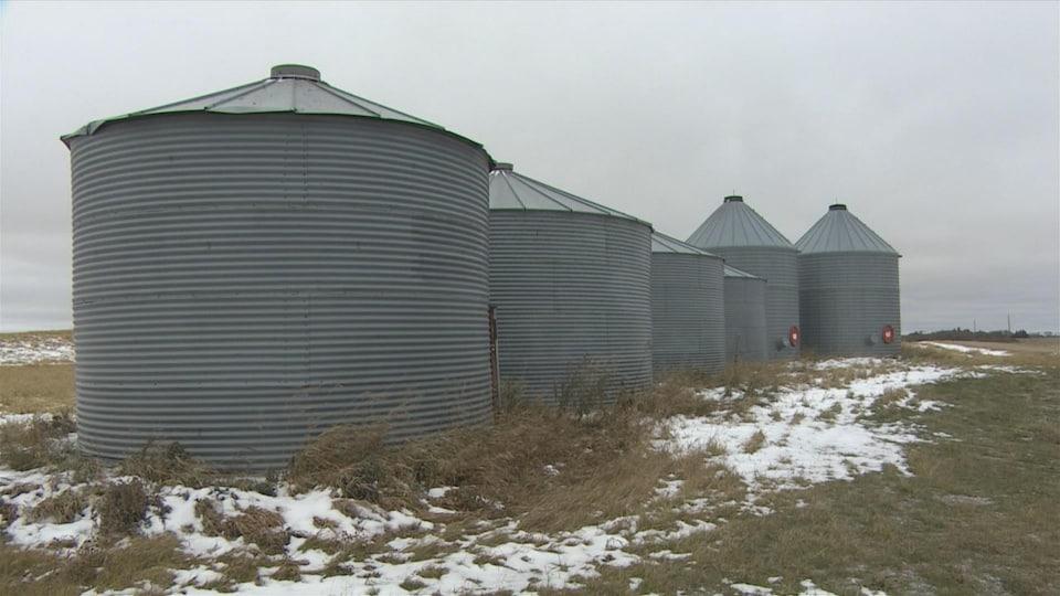 Sur un champ de canola et sous un ciel gris, se trouvent six grands conteneurs et autour d'eux on constate de la neige éparse.