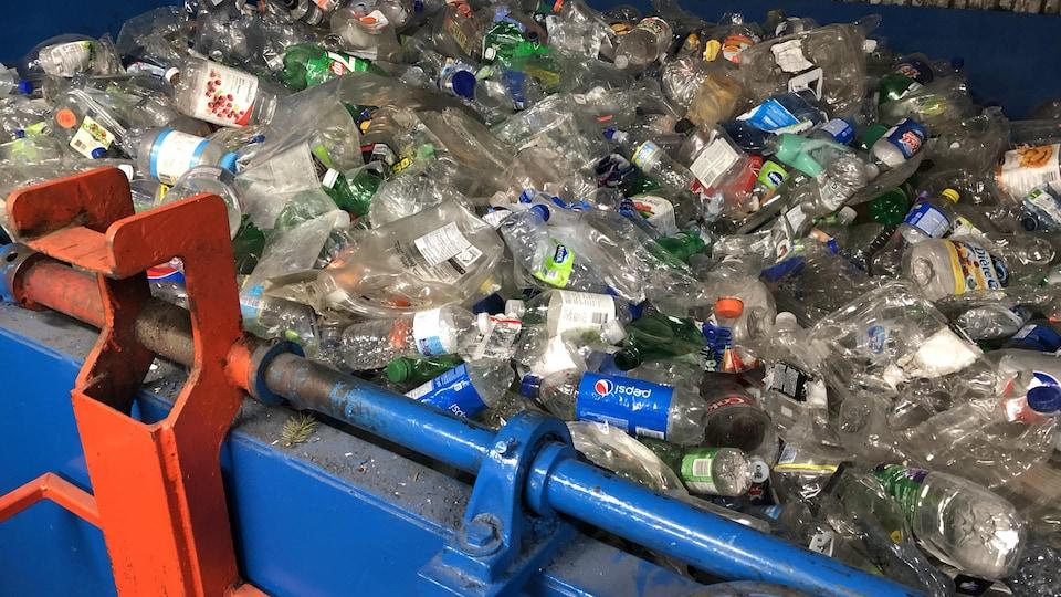 Des bouteilles de plastique sont entassées dans un conteneur.