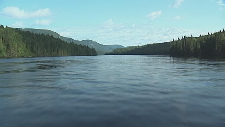 La rivière est entourée d'arbres et de montagnes.