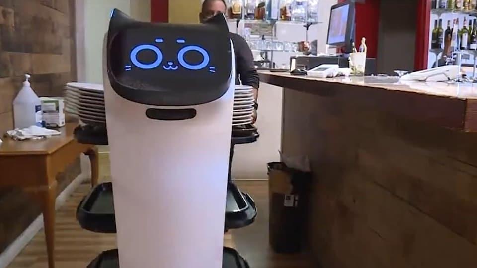 Robbie le robot au restaurant Mantra de Victoria.