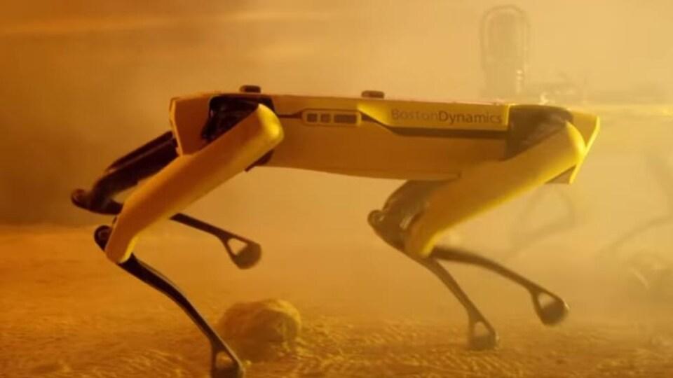 Le chien-robot de Boston Dynamics, Spot.