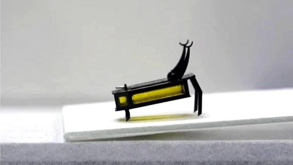 Gros plan sur le petit robot qui rappelle un scarabée.