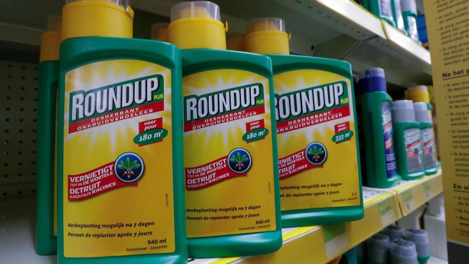 Des contenants du pesticide Roundup sur une tablette de magasin