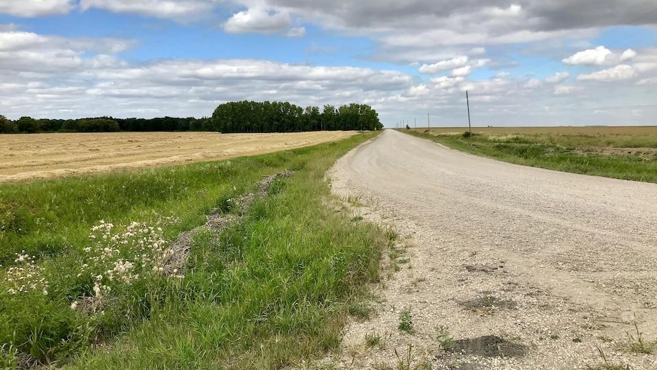 Une route de gravier entre deux champs.