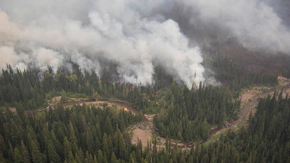 Vue aérienne du ruisseau avec des panaches de fumée et des flammes d'un côté