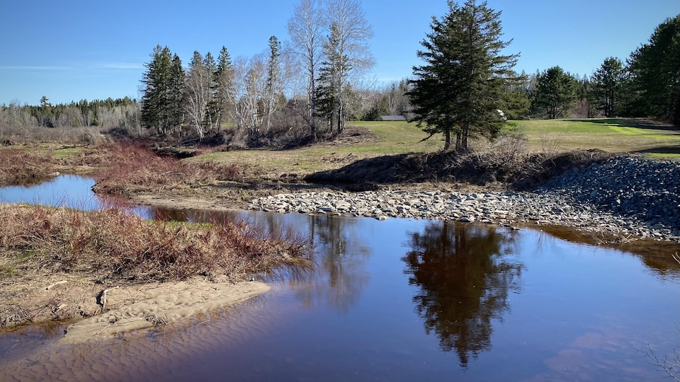 Prise de vue au niveau du sol du ruisseau empierré qui se jette dans la rivière Miramichi.