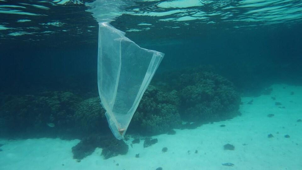 Un sac en plastique flotte dans l'océan