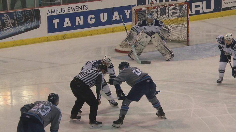 Des joueurs de hockey avant une mise au jeu.