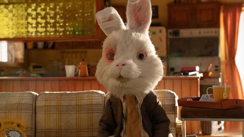 Un lapin blanc est habillé et assis sur un sofa.