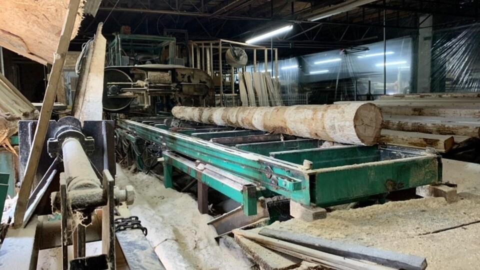 Un tronc d'arbre prêt à être scié dans l'usine.