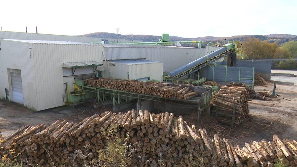 Des billots de bois empilés près de la scierie.