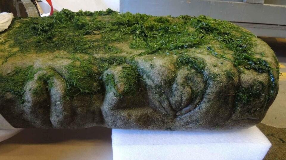 Une statue de pierre recouverte d'algues.