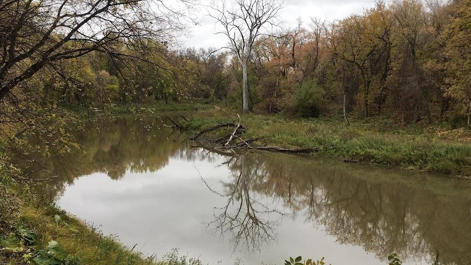 Une rivière dans un paysage automnal.