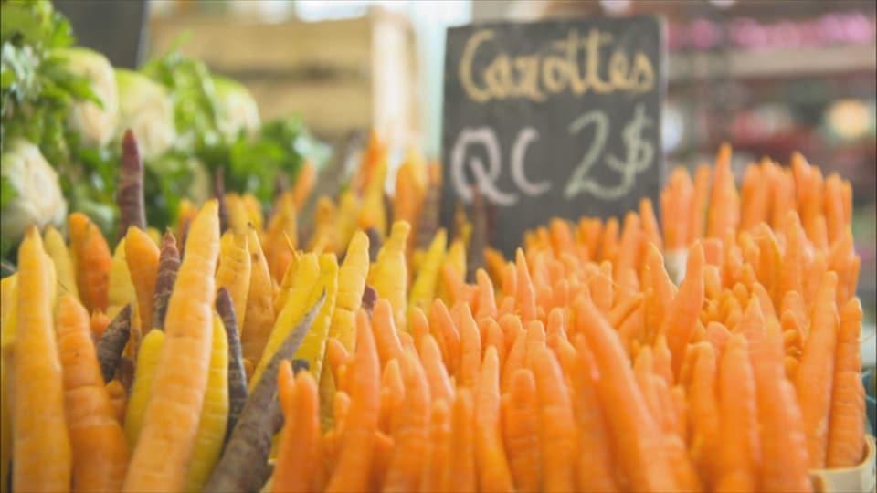 Un étalage de carottes du Québec dans un marché public.