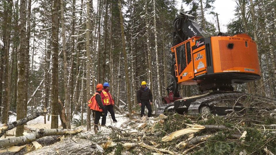 Quelques travailleurs forestiers en forêt l'hiver.