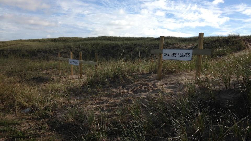 Un sentier avec une affiche « sentiers fermés ».
