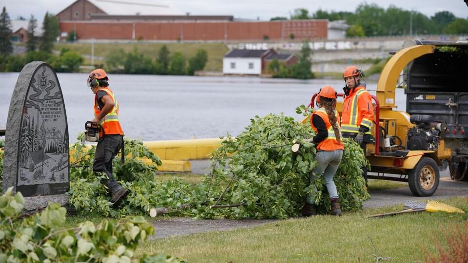 Des travailleurs ramassent des branches d'arbres.