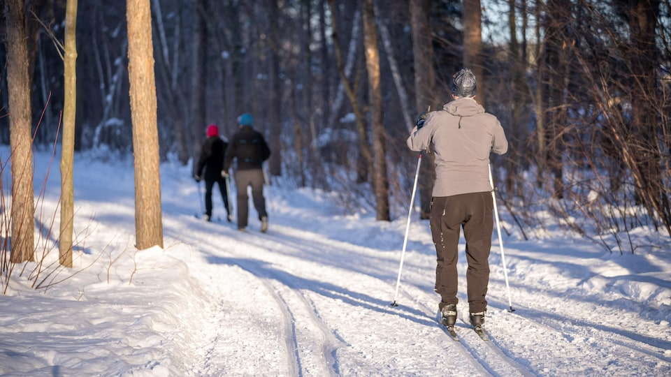 L'aire écologique Châteaudun à Trois-Rivières est prisée des amateurs de ski de fond et de marche à pied.