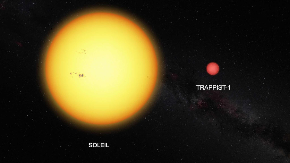 Représentation de la taille du Soleil et de l'étoile Trappist-1