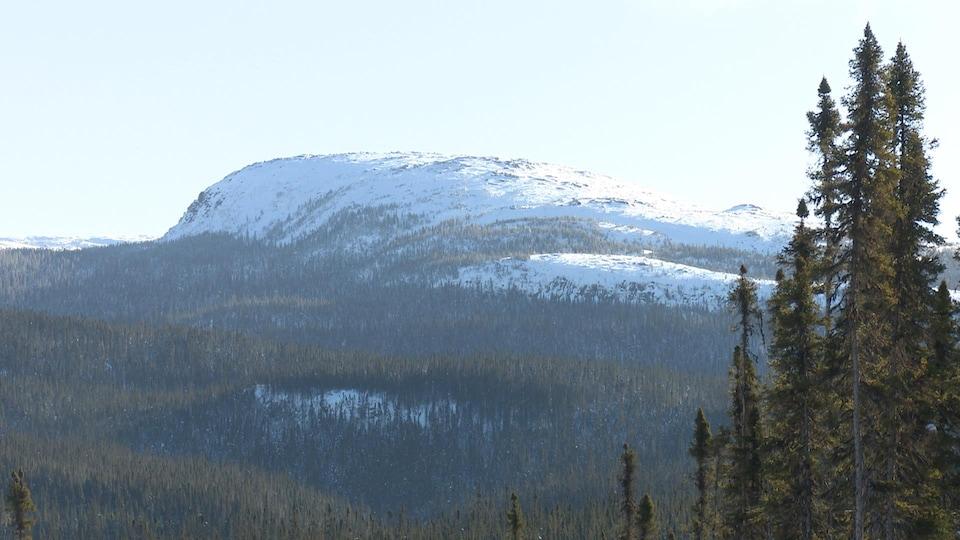 Le sommet des monts Groulx à travers les arbres.