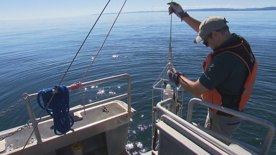 Une sonde en mer permet de détecter la densité des bancs de poisson dont se nourrit la baleine.
