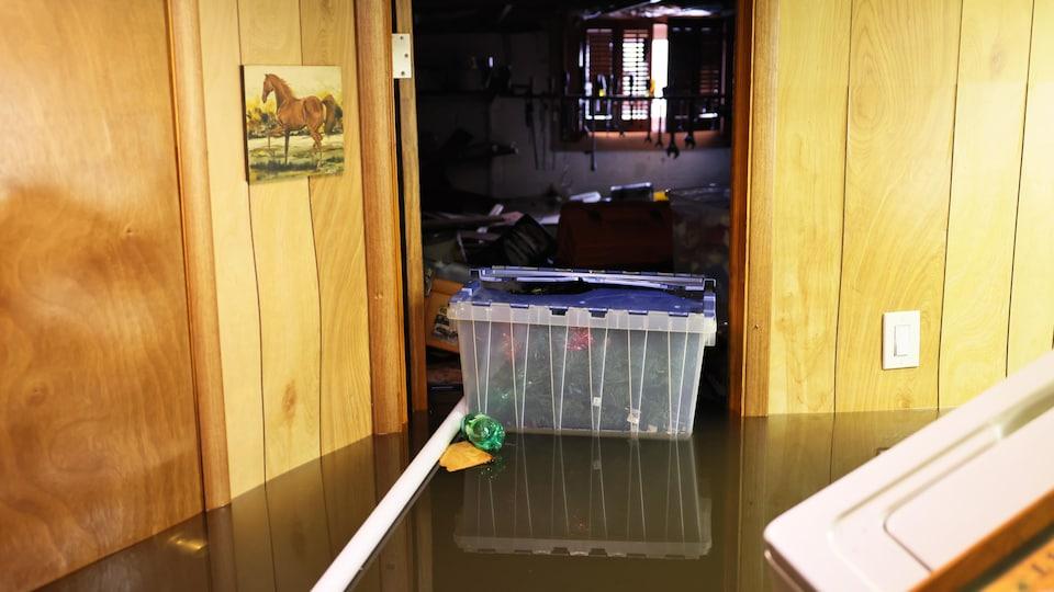 Des articles personnels flottent dans un sous-sol inondé.