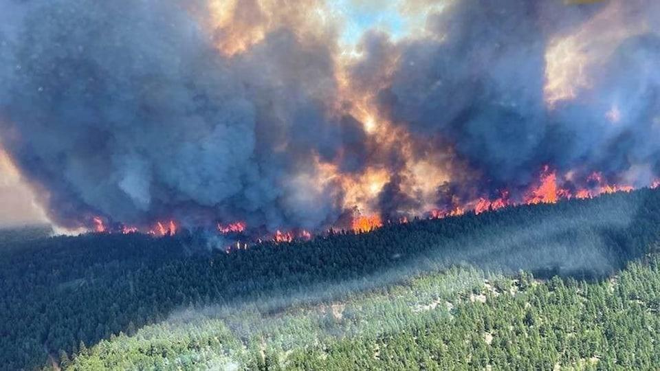 Une immense zone de forêt est la proie des flammes au-dessus de laquelle se trouve un panache de fumée.