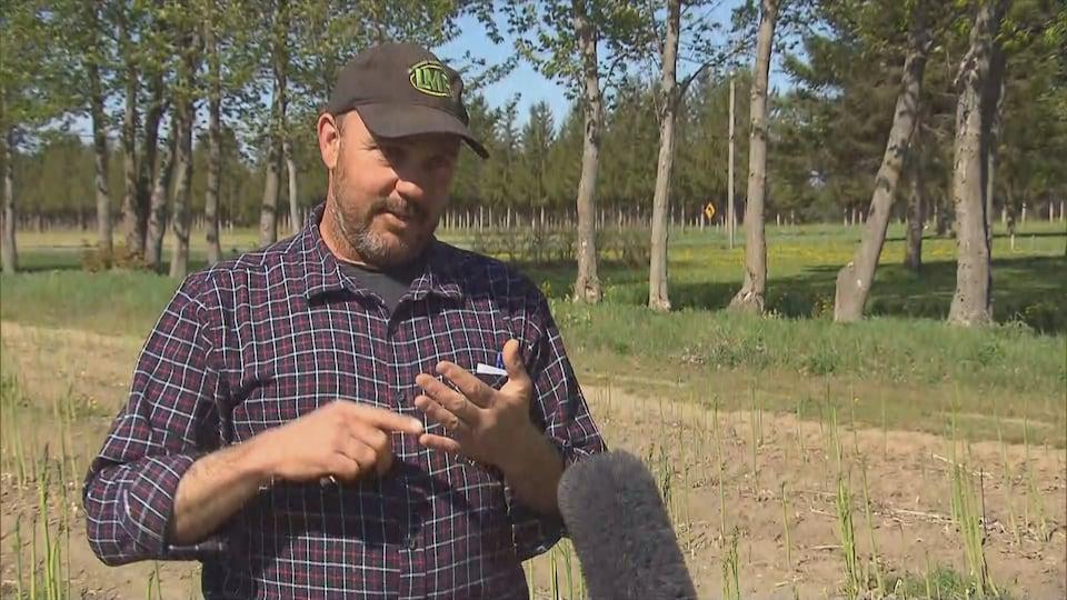 Stéphane Roy dans un champ d'asperges.