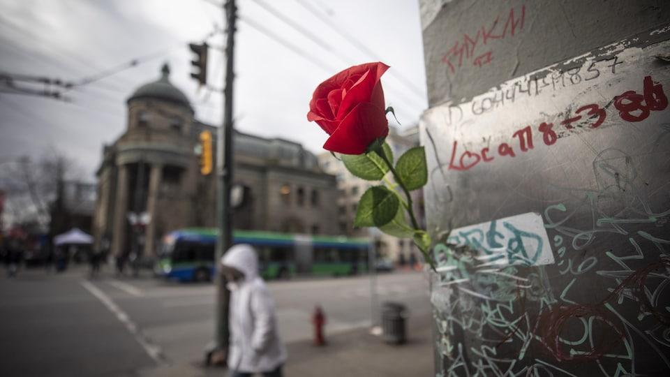 Une rose accrochée à la mémoire des victimes de la crise des opioïdes à Vancouver.