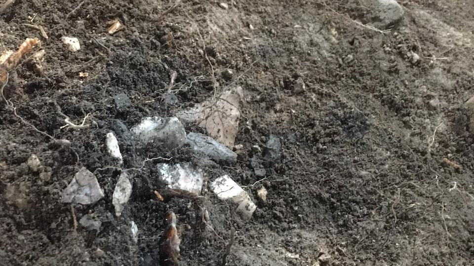 Des pointes de lance ou de flèches en pierre sortent du sol.
