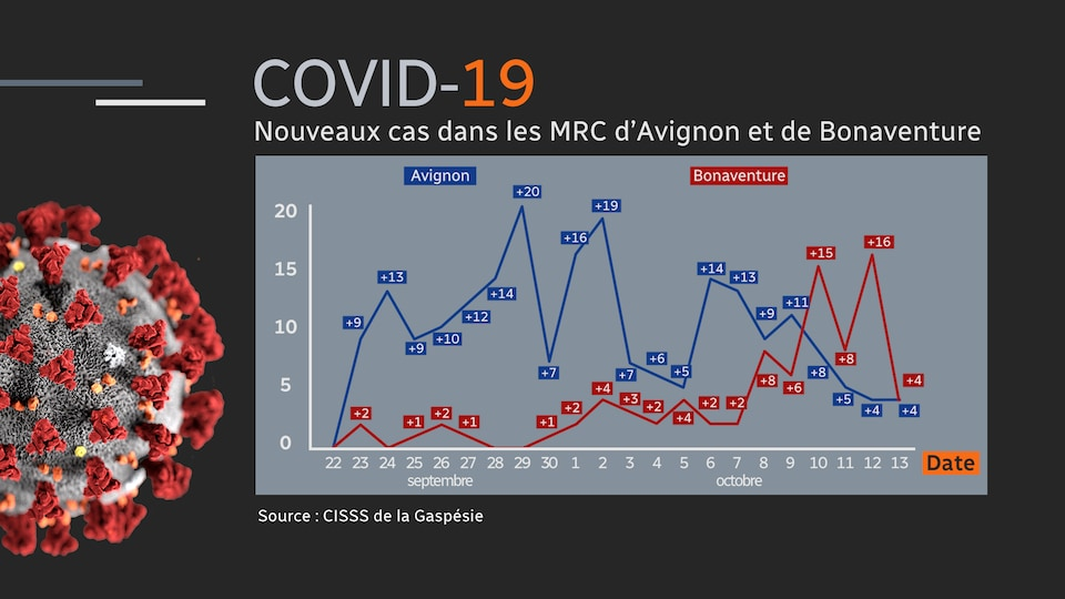 Deux lignes du temps montrent l'évolution quotidienne du nombre de cas de SRAS-CoV-2 du 22 septembre au 13 octobre.