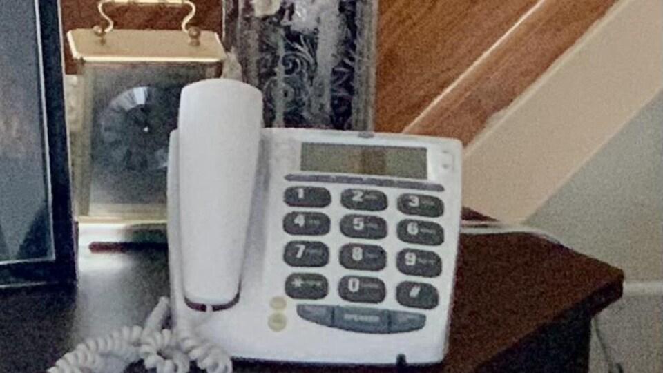 Un téléphone.