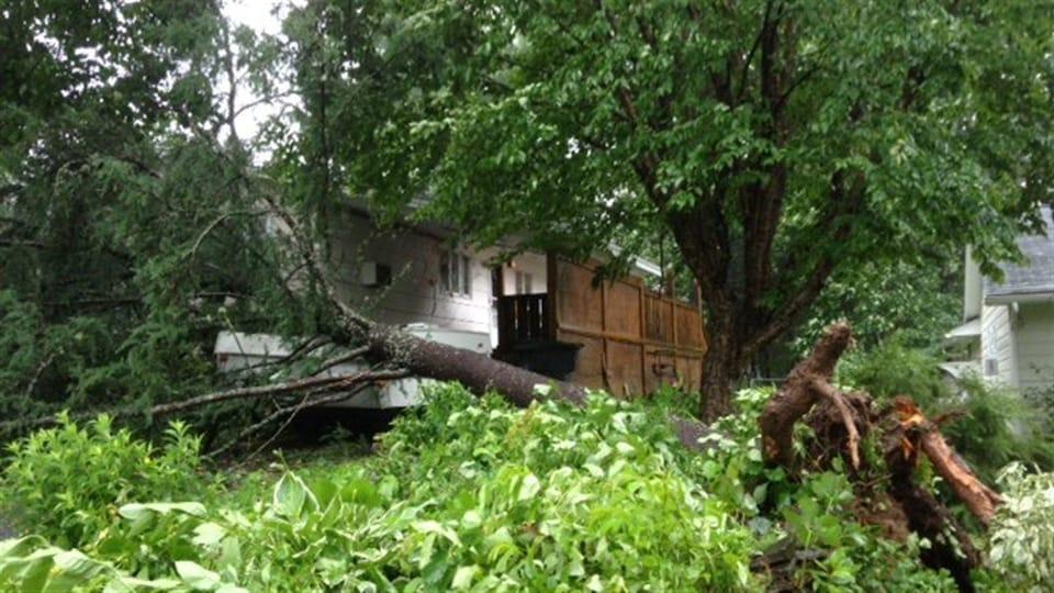 La tempête Arthur a endommagé des propriétés à Fredericton, au Nouveau-Brunswick.