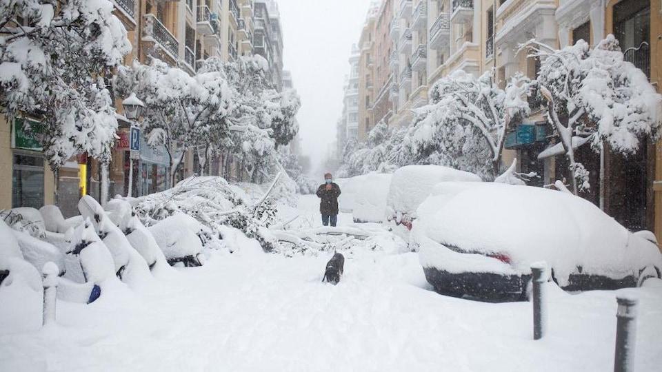 Un homme promène son chien dans une rue qui n'a pas été déneigée. Les voitures et les arbres sont ensevelis sous la neige.