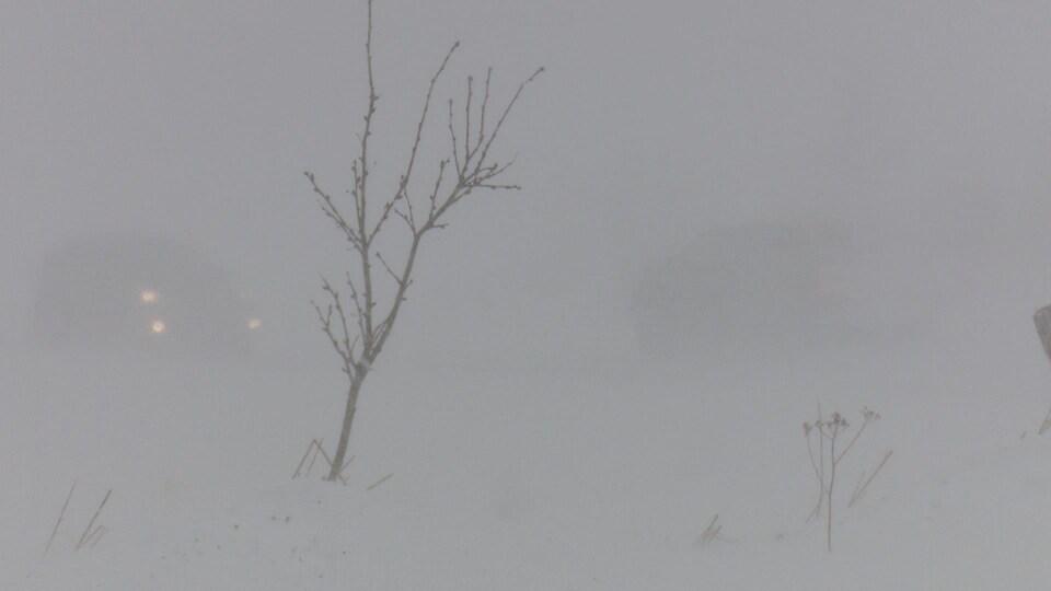 On distingue difficilement les phares d'une voitures à travers une tempête de neige.
