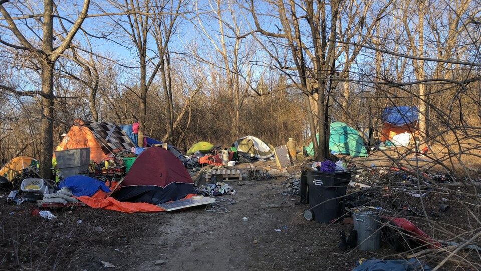 Des tentes disposées en cercle dans un petit boisé. Des détritus jonchent le sol.