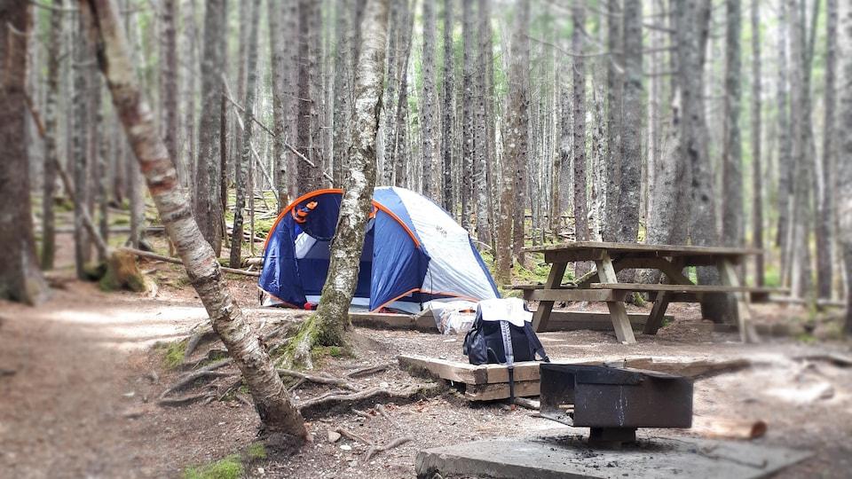 Une tente dans la forêt sur un terrain de camping.