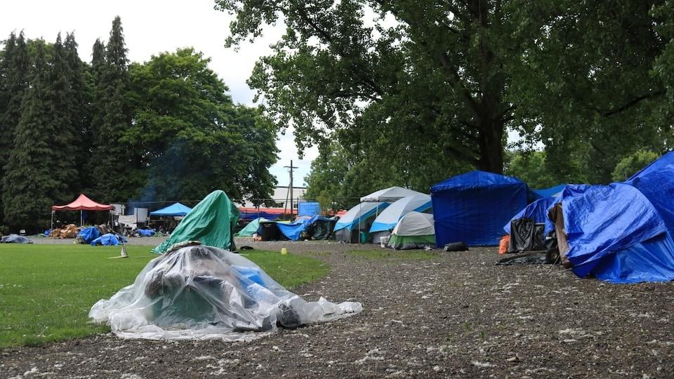 Des tentes sont installées les unes contre les autres en bordure de grands arbres dans un secteur du parc Strathcona à Vancouver.