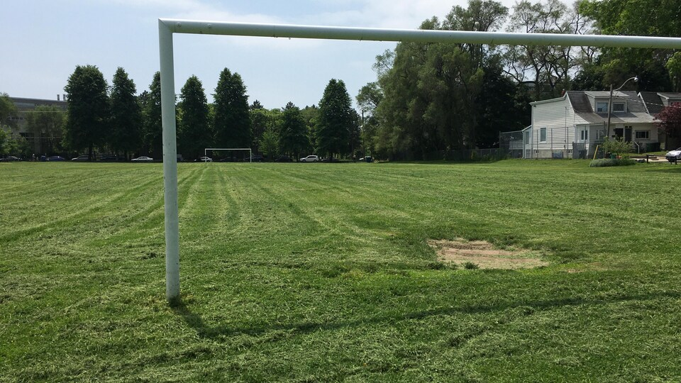 Les buts du terrain de soccer.