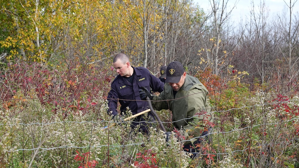 Trois policiers cherchent un boisé.