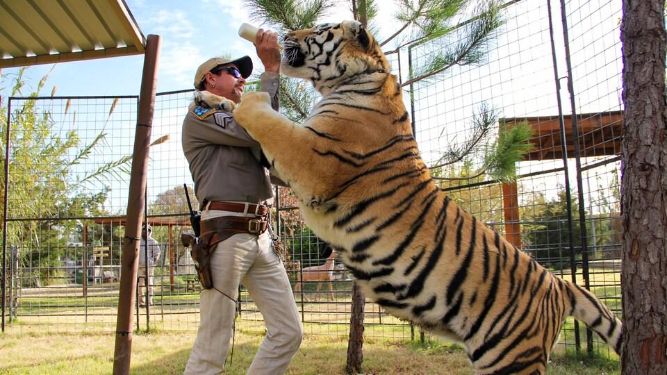 Un homme donne le biberon à un tigre.