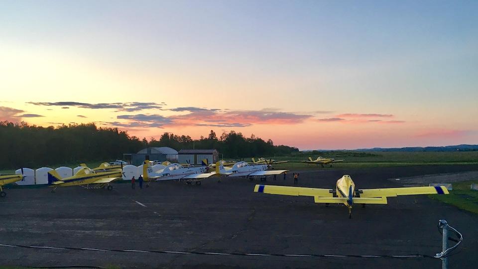 L'aéroport de Charlo et les avions prêts à décoller dès le lever du jour.